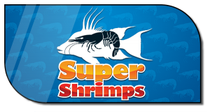 Order SuperShrimps Dry Chum Online Now!